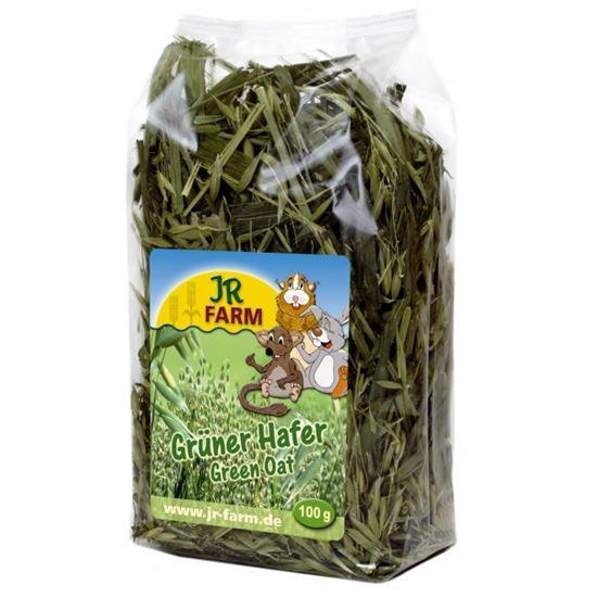 Obrázek Zelený oves 100 g