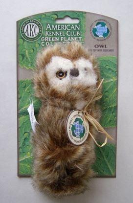 Obrázek GreenPlanet Sova