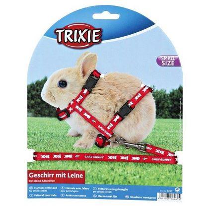 Obrázek Postroj pro králíky s motivem BABY BUNNY 20 - 33 cm/8 mm