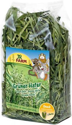 Obrázek Zelený oves 500 g