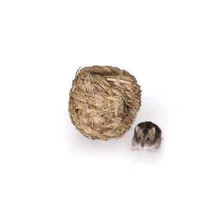 Obrázek Koule travní Tommi (S)