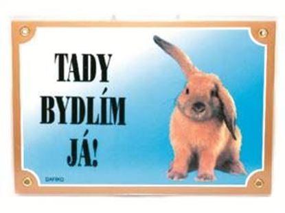 Obrázek Tabulka králík