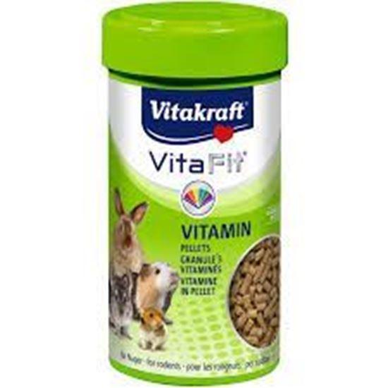 Obrázek Vita Fit Vitamin 80 g
