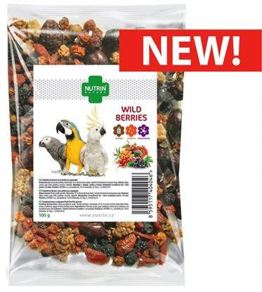 Obrázek Nutrin Nature Wild Berries 100g