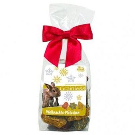 Obrázek JR Farm Vánoční bezobilné sušenky pro hlodavce 75 g